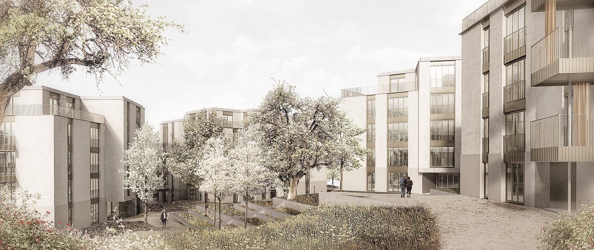 Studienauftrag Trichtenhausenstrasse |Referenz | Ettinger Partner